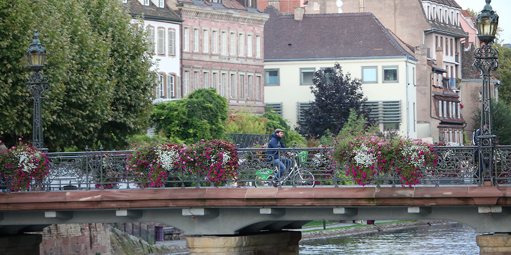 Man riding bike on a bridge with beautiful flowers in Strasbourg, France.